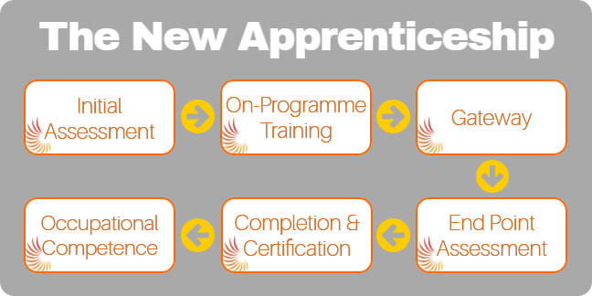 New Apprenticeship model