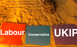 general election psychic tortoise