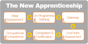 new-apprenticeship-model